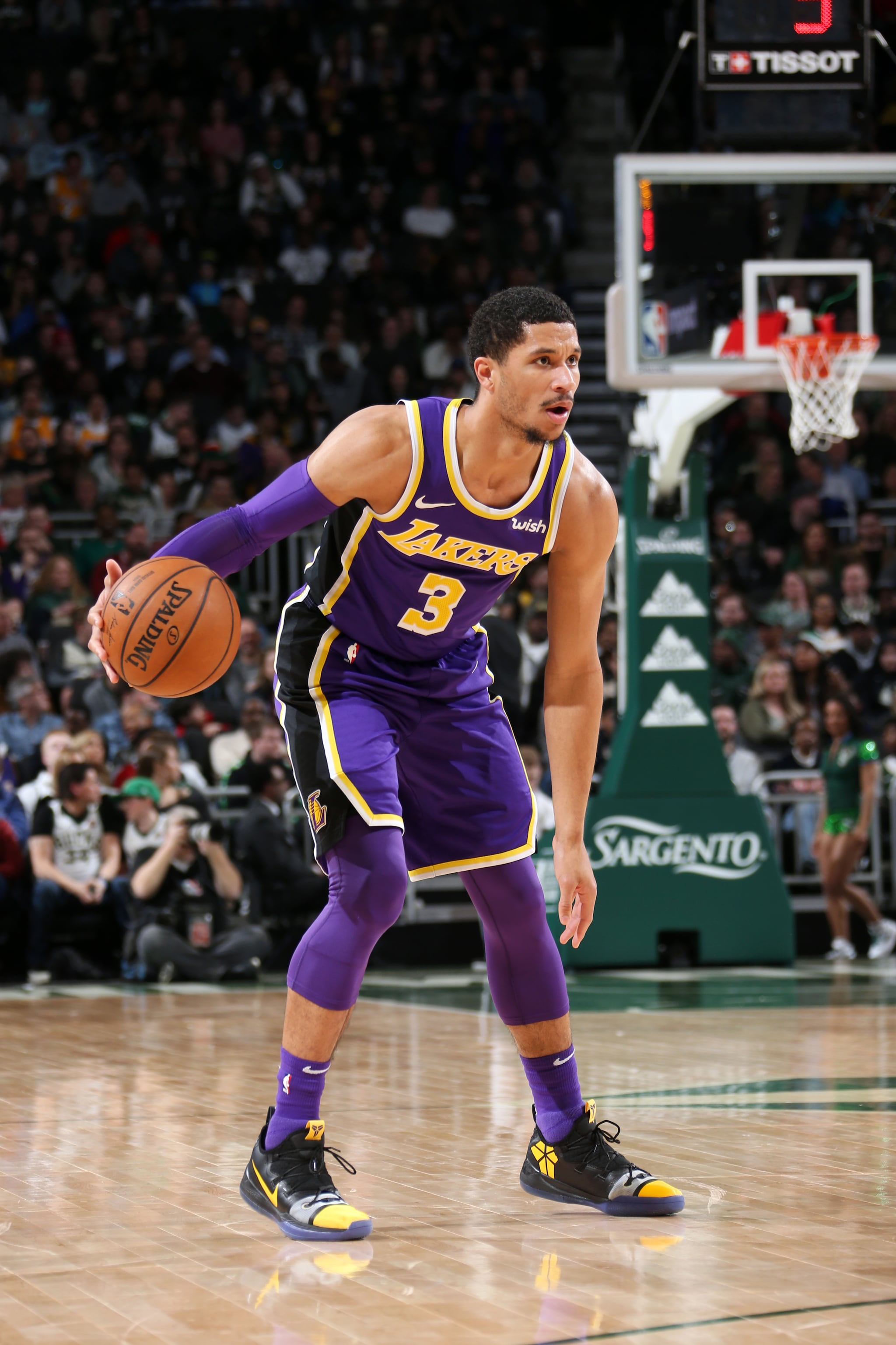 Josh Hart Player Picture