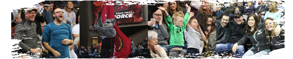 The Skyforce offer a unique family-friendly atmosphere to watch professional basketball