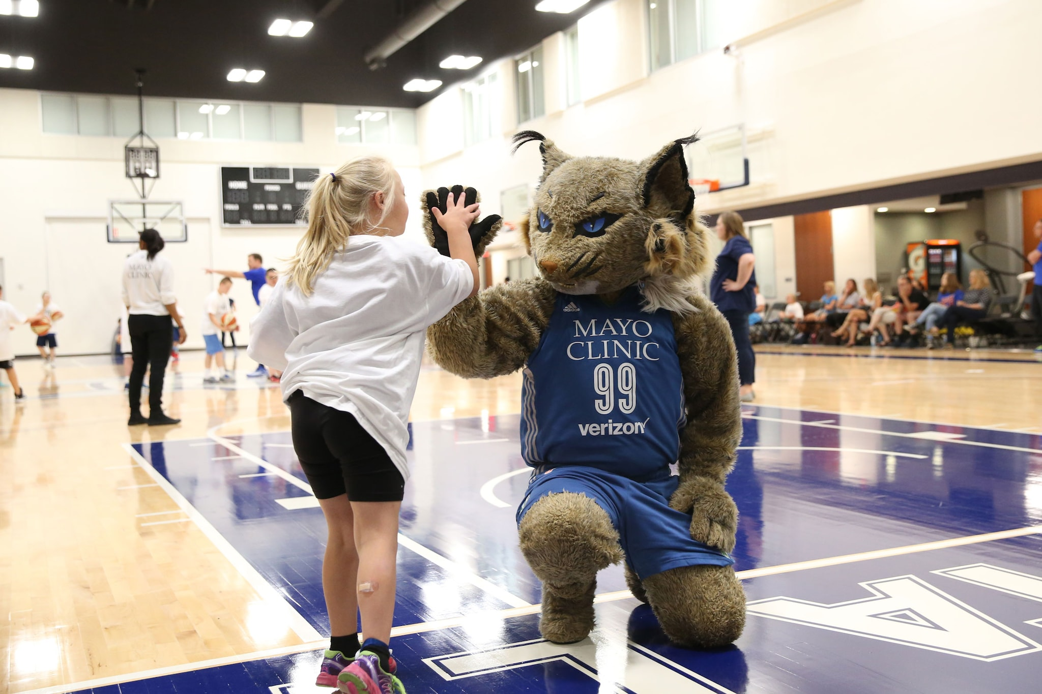 Lynx Fit Clinic