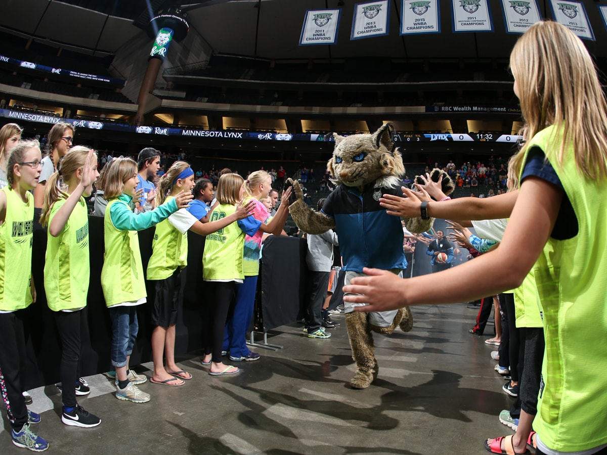 Minnesota Lynx Group Tickets
