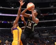 LOS ANGELES, CA - JULY 3:  Sugar Rodgers #14 of the New York Liberty shoots the ball against the Los Angeles Sparks on July 3, 2016 at STAPLES Center in Los Angeles, California.  NOTE TO USER: User expressly acknowledges and agrees that, by downloading and or using this photograph, User is consenting to the terms and conditions of the Getty Images License Agreement. Mandatory Copyright Notice: Copyright 2016 NBAE (Photo by Juan Ocampo/NBAE via Getty Images)